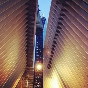 matti leshem WTC